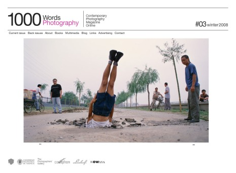 Li Wei falls to earth, 2002
